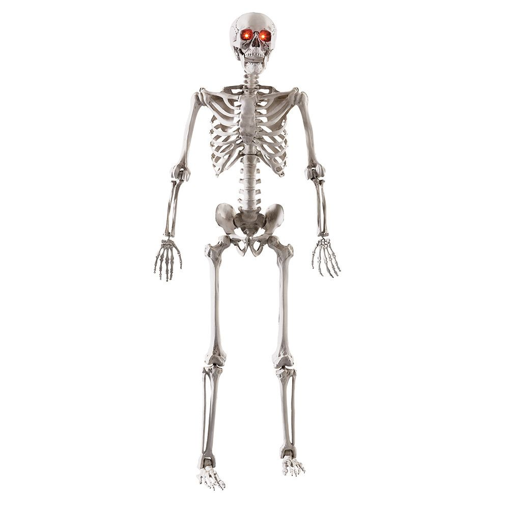 """5-Foot Poseable Skeleton with LED Illumination & Try-Me Feature - Requires 3 """"AA"""" Batteries"""