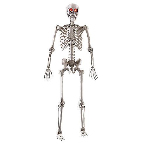 5 ft. LED Adjustable Skeleton