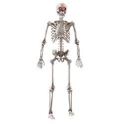 Home Accents Halloween 5 ft. LED Adjustable Skeleton