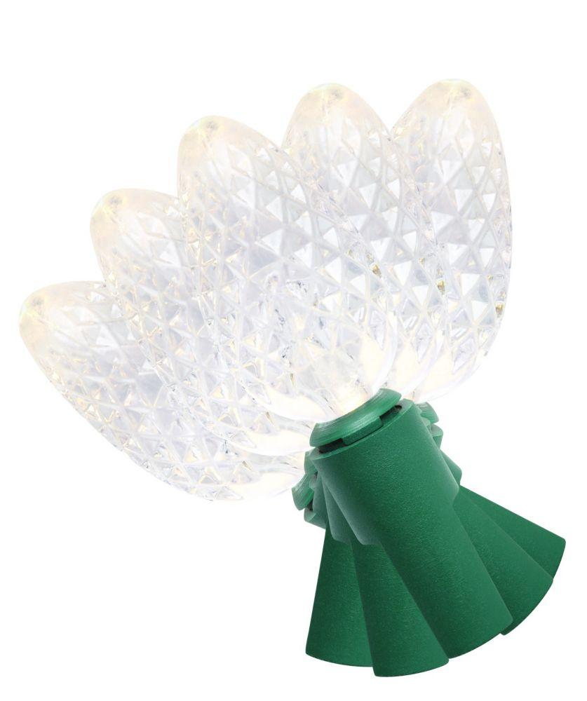 35 Light LED C6 Warm White Bulb