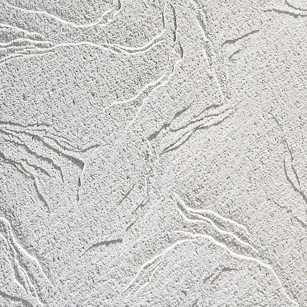 Sandrift R808 Carreaux de plafond acoustique R808, 2 pieds x 2 pieds x 2 pieds x 3/4 po, bordure de ligne d'ombre