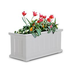 Mayne Cape Cod 24-inch x 11-inch Patio Planter in White