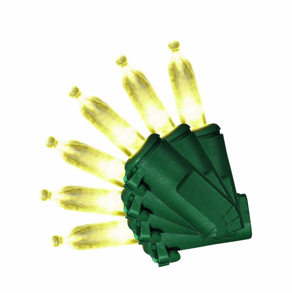 50 DEL Lampes M5 Lumière pure  BLANC CHAUD