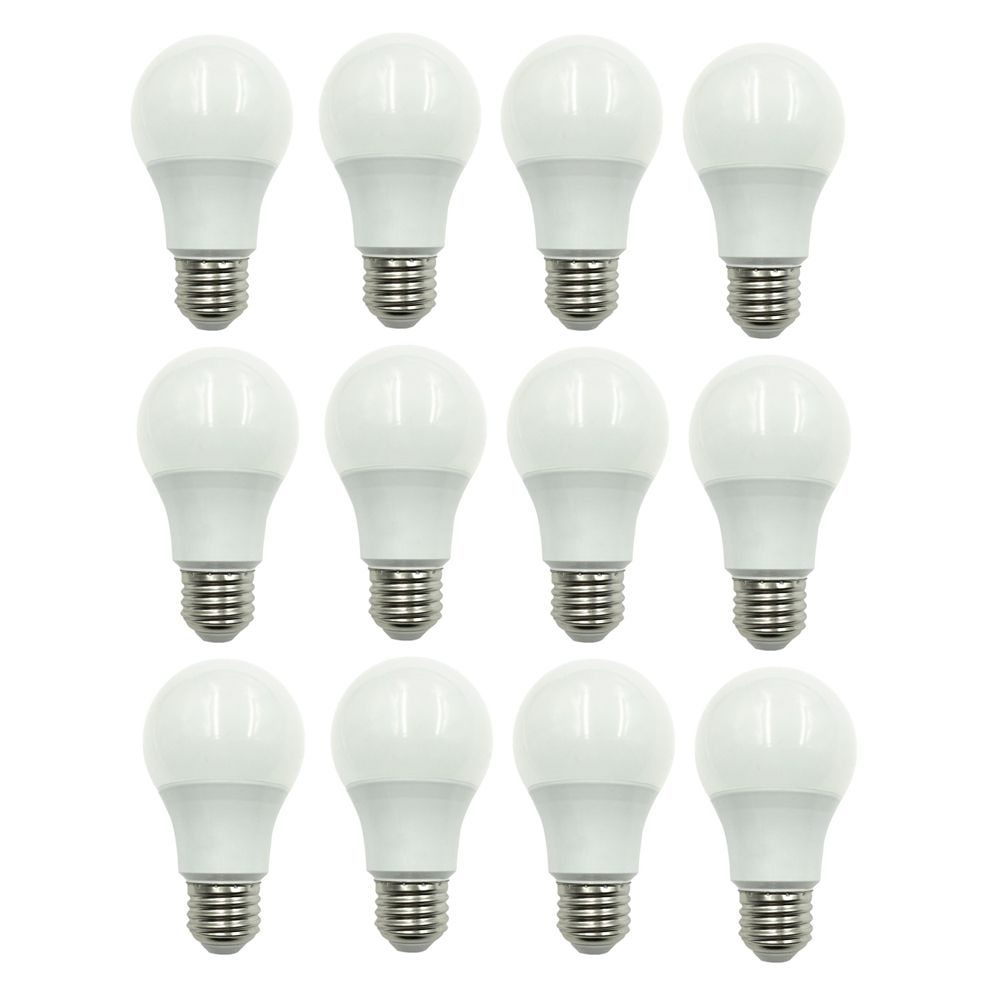 40W Equivalent Soft White (2700K) A19 Non-Dimmable LED Light Bulb (12-Pack) 50213012712 in Canada