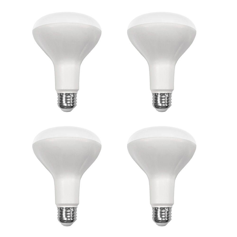 Ampoule à DEL BR30 à intensité réglable, lumière naturelle (5 000K), équivalant à 65 W (paquet de...