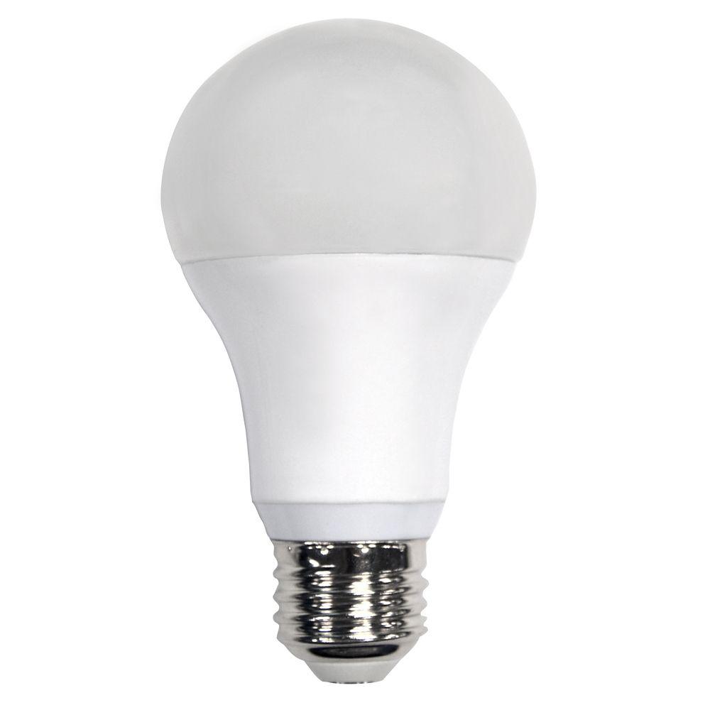 Ampoule à DEL A19 à intensité réglable commandée à distance, lumière naturelle (5 000K), équivala...