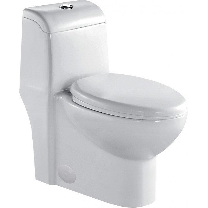 AQUA seule pièce , double flushtoilet