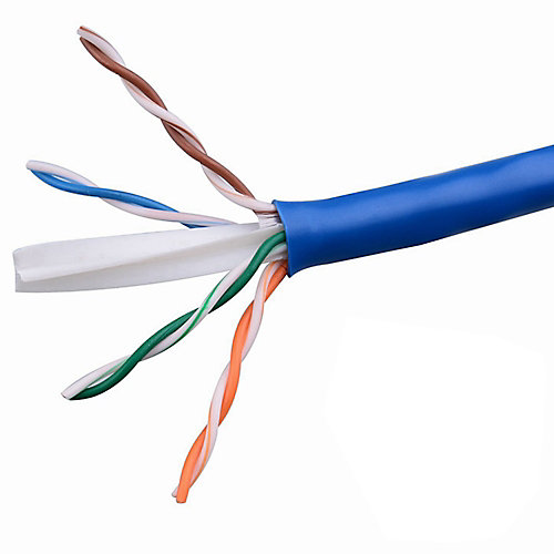 Category 5 1000 ft. Blue 24-4 Unshielded Twist Pair Cable with FT4 Rated