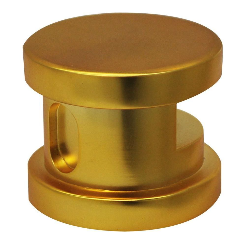 Steamhead with Aroma Therapy Reservoir in Polished Brass