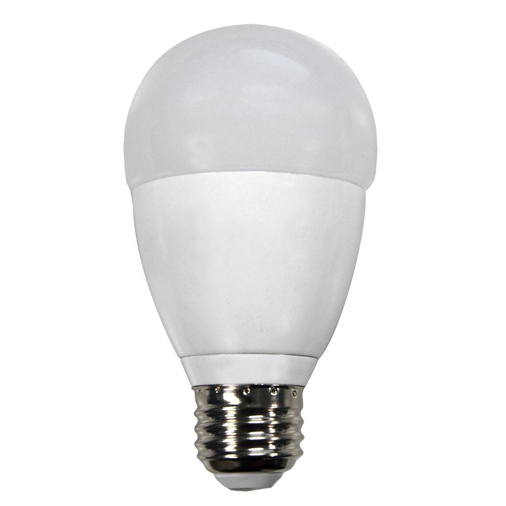 Ampoule à DEL A19 à changement de couleur (RVBB) commandée à distance équivalant à 60 W