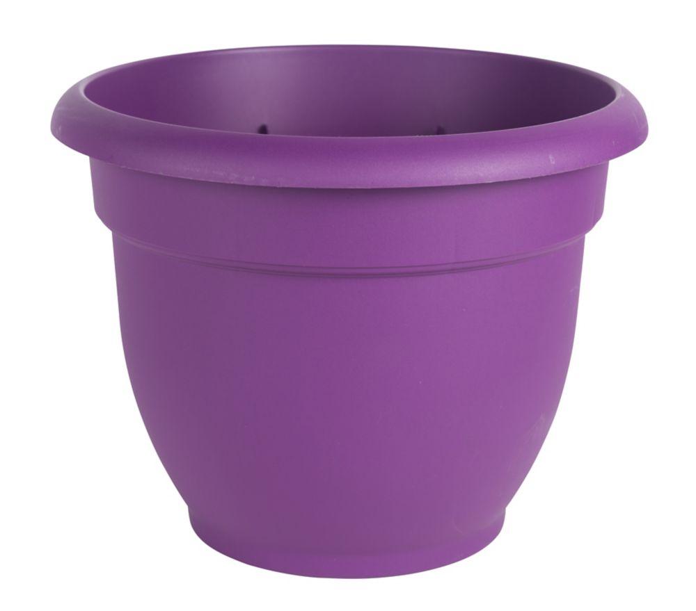 """12"""" Jardinière Ariana violet"""