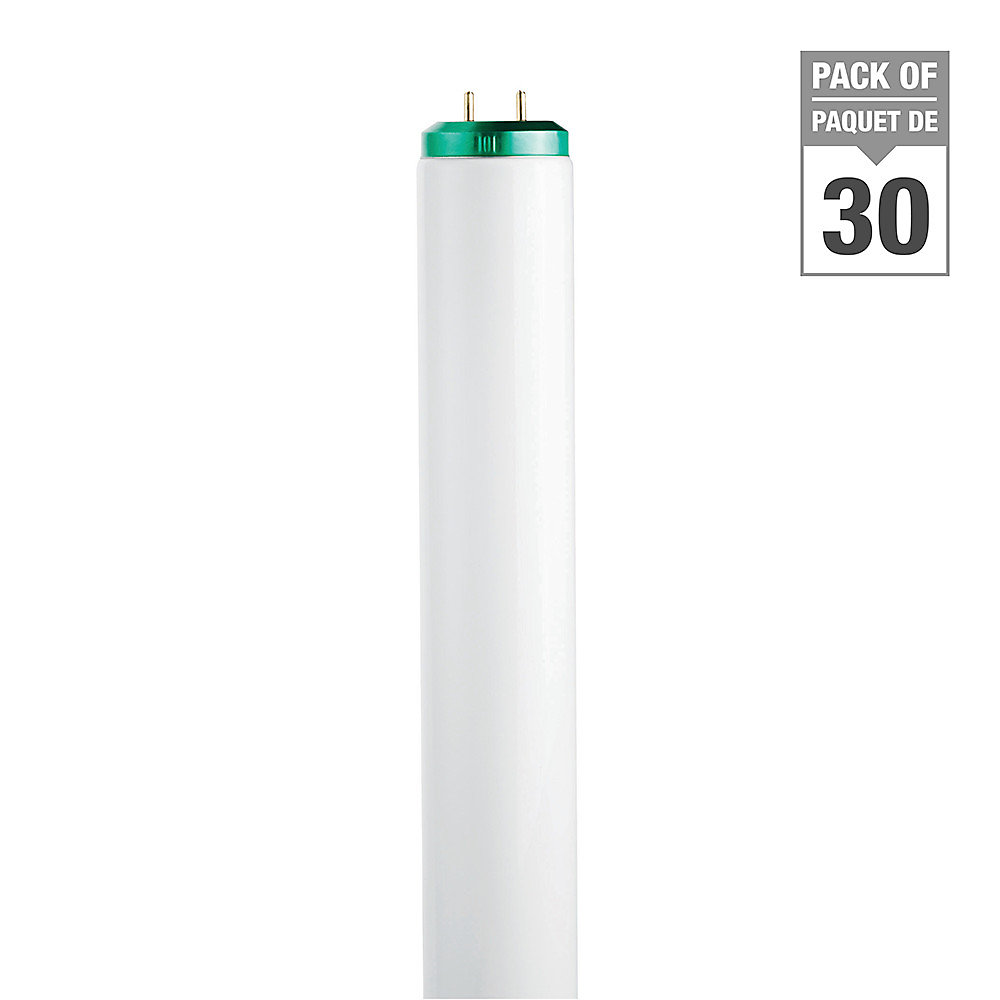 Fluorescent 20W T12 Cool White - Case of 30 Bulbs