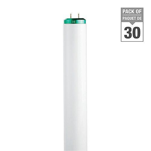 Philips 20W T12 24-inch Daylight Fluorescent Light Bulb (30-Pack)