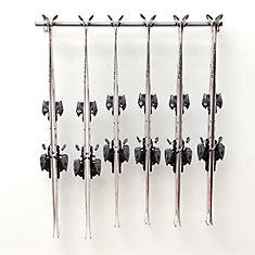 ensemble de rangement pour ski alpin multiple (6 pairs)