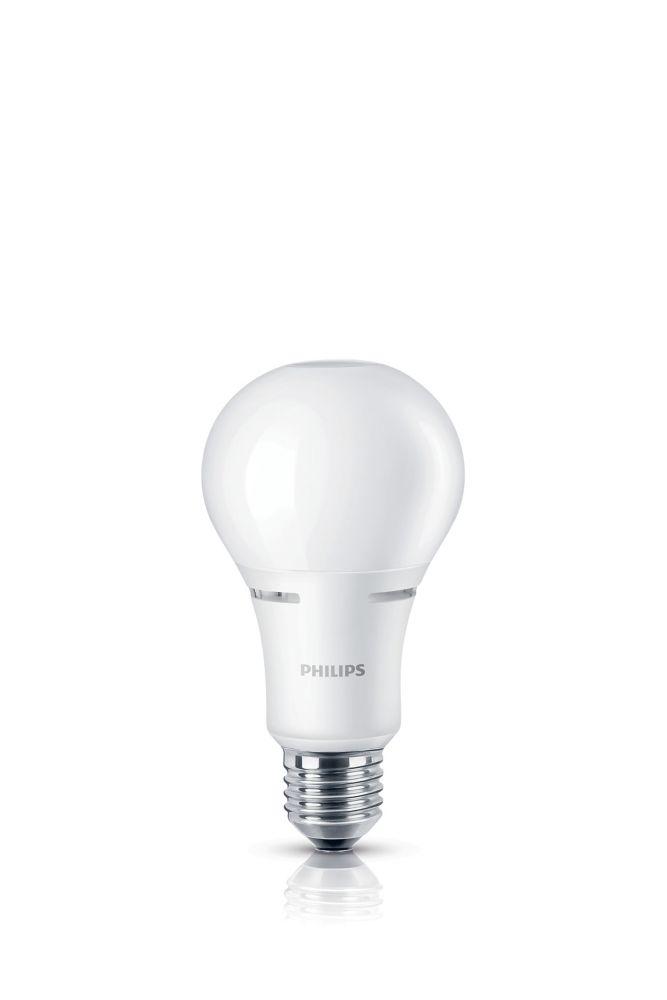 Lampe de menage décoratifs A21 DEL 100 W  À culot moyen.