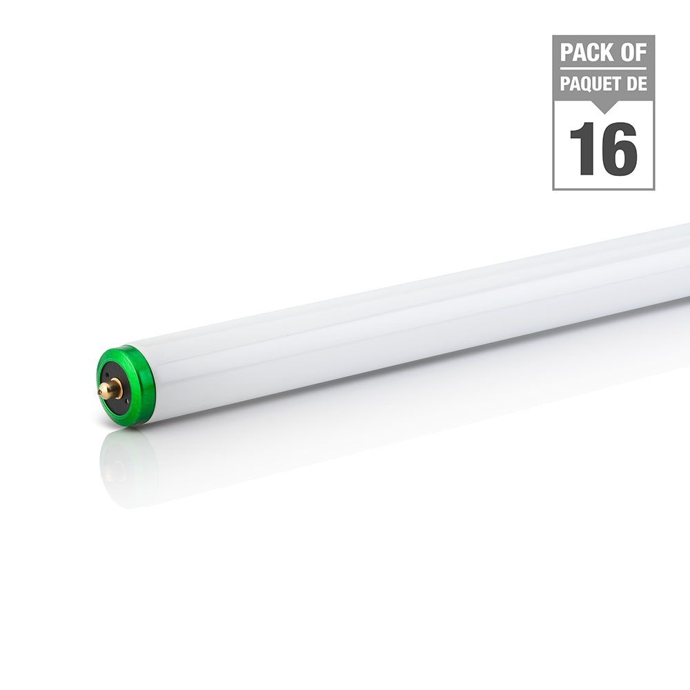 Fluorescent Light Covers 48 X 16: Philips Fluorescent 75W T12 96 Inch Cool White (4100K