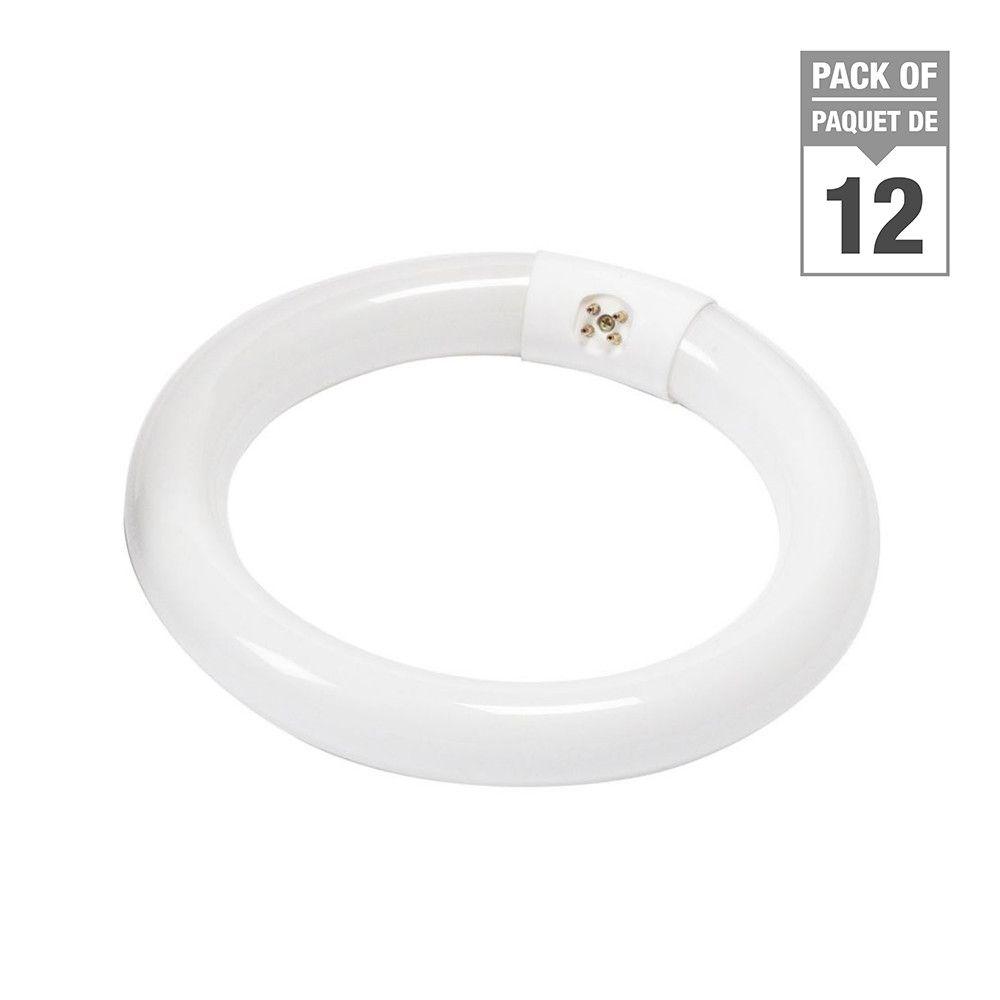 "Fluorescent 22W T9 8"" Circline Soft White - Case of 12 Bulbs"
