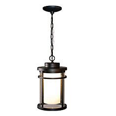 Luminaire suspendu d'extérieur à DEL, 9W, noir