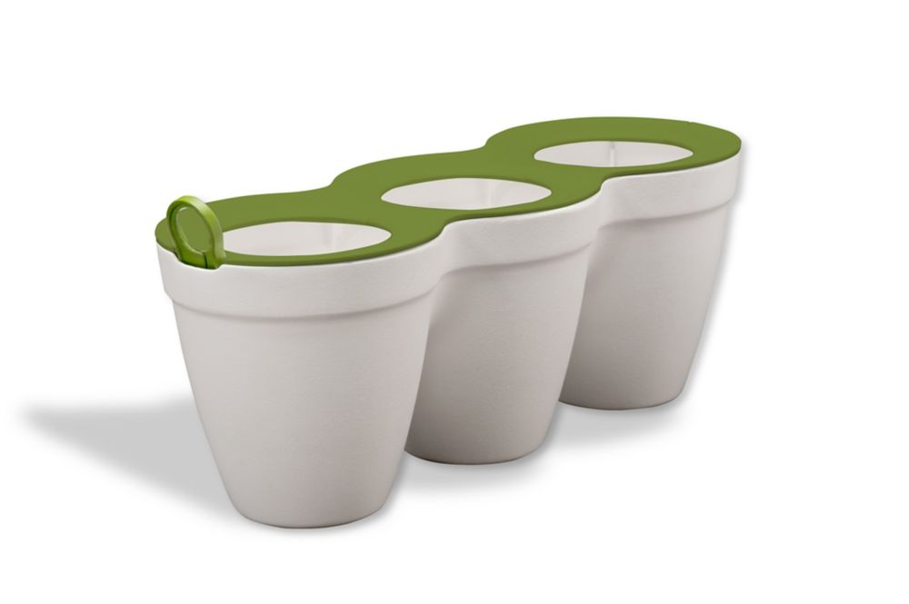 Keter Ivy Herbs Planter