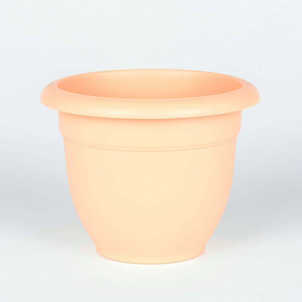 8 Inch Bell Pot Blush