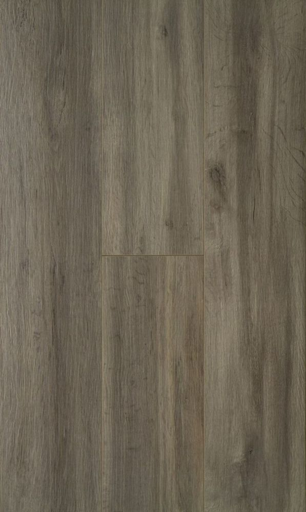 Home Decorators Collection 12mm Washed Grey Oak Laminate