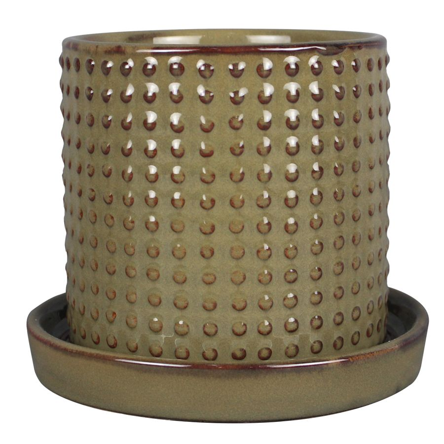 6.3 Inch.  Dotted Cylinder (Sage)