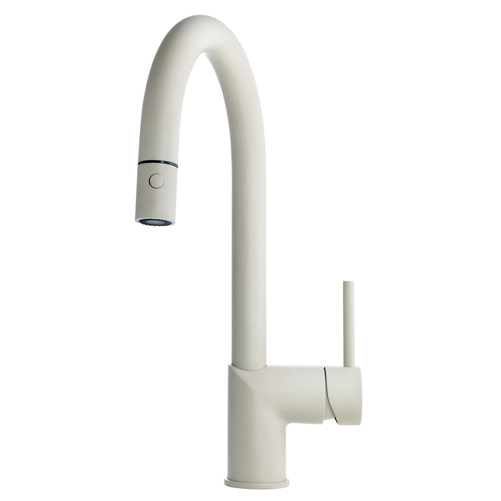 Gooseneck pull down faucet Cha