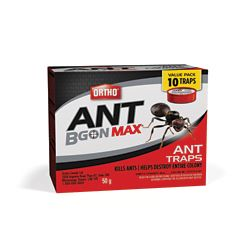 Ortho Ant B Gon Max attrape-fourmis - paquet de 10 10x5g