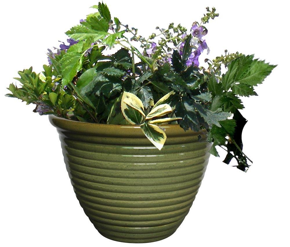 16 Inch Honey Jar Planter