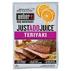 Just Add Juice 32g Teriyaki Marinade Mix