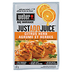 Just Add Juice 32g Citrus Herb Marinade Mix