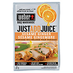 Just Add Juice 32g Sesame Ginger Marinade Mix