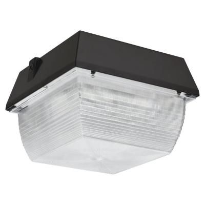Outdoor LED Canopy / Ceiling Mount Dark Bronze
