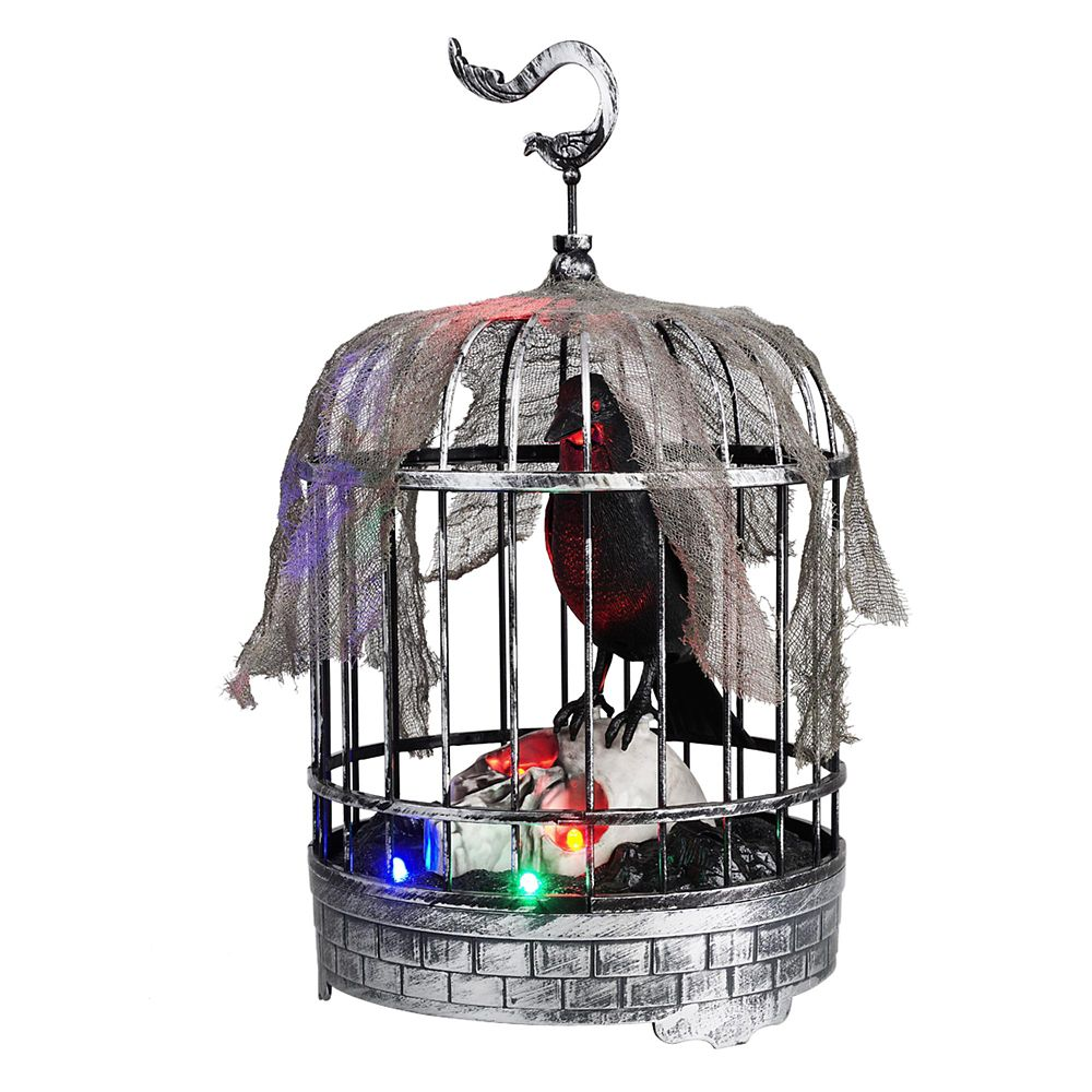 Animated Talking Raven In Cage