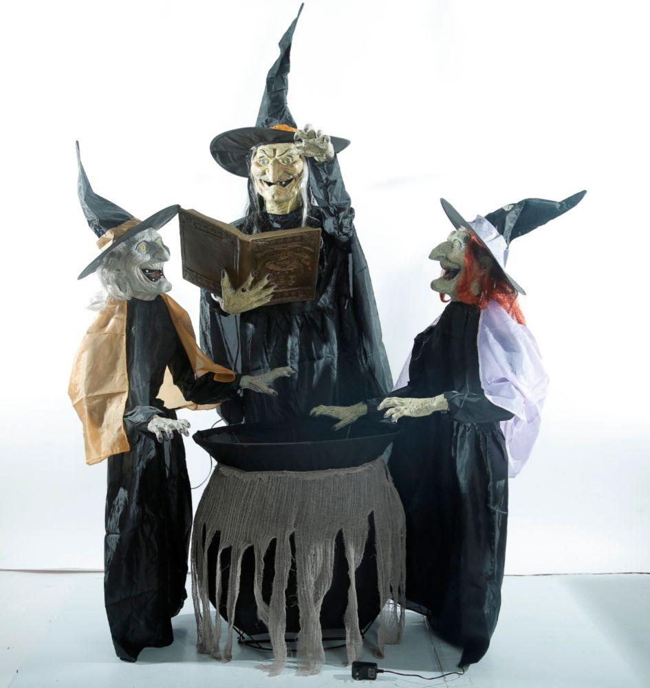 Trio de sorcières enchanteresses