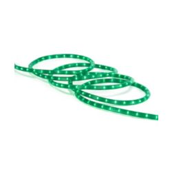 Home Accents Holiday 18 ft. Green Rope Christmas Light