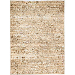 ECARPETGALLERY Impressions Off-White 5 ft. 3-inch x 7 ft. 3-inch Rectangular Area Rug