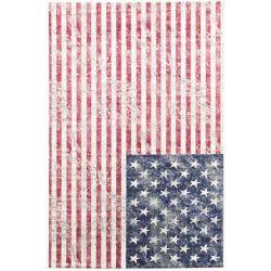 ECARPETGALLERY Carpette, 4 pi 3 po x 6 pi 5 po, rectangulaire, rouge Stars and Stripes