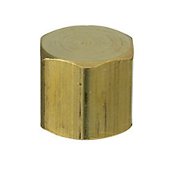 Sioux Chief 1/2 inch Brass FPT Cap