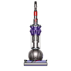Small Ball Animal Upright Vacuum