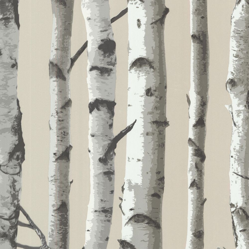 Irvin Grey Birch Tree Wallpaper