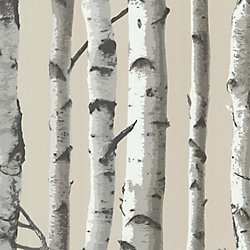 Brewster Irvin Grey Birch Tree Wallpaper