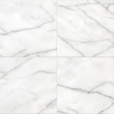 12 Inch x 12 Inch Arctic Marble (5 Sq.Ft./Case)