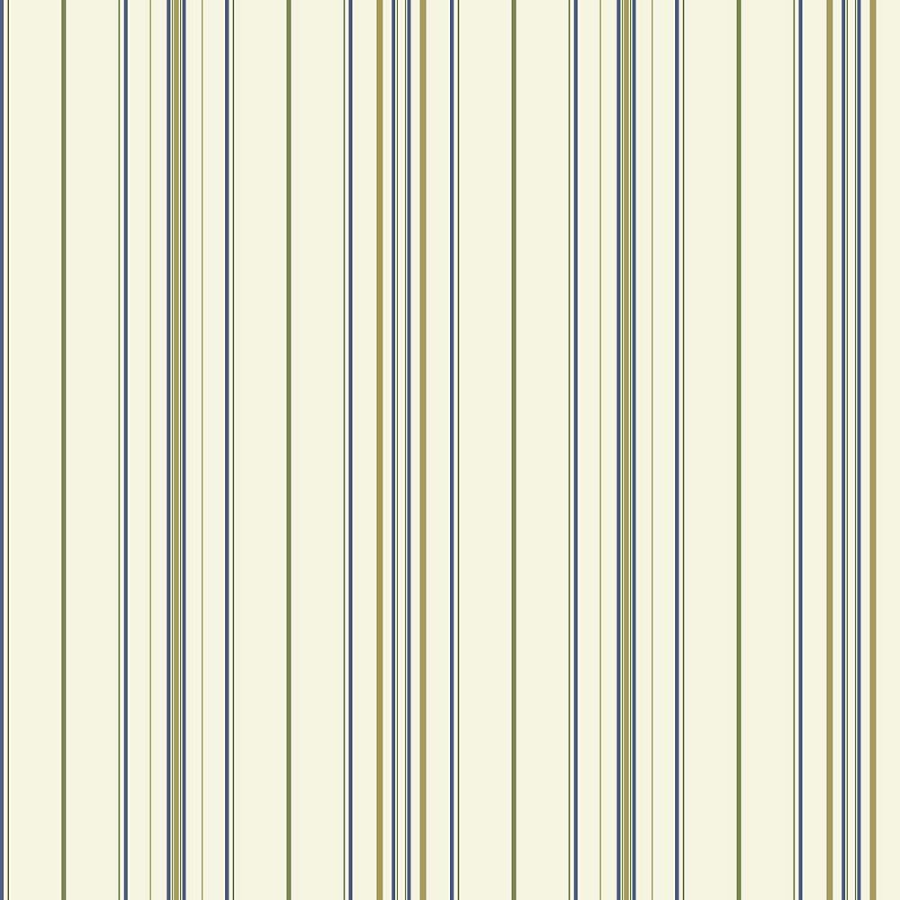 Pleasing Room To Grow Wide Pinstripe Wallpaper Interior Design Ideas Skatsoteloinfo