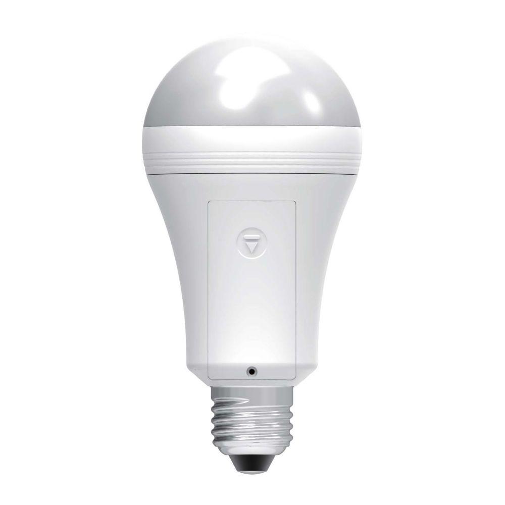 Ampoule Everbright pour batterie de secours