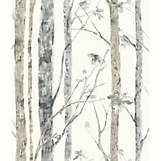 Birch Trees Peel and Stick Wall Paper