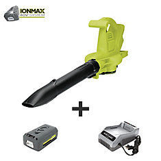 iON 200 MPH 350 CFM Cordless 3-in-1 Leaf Blower/Vacuum/Mulcher