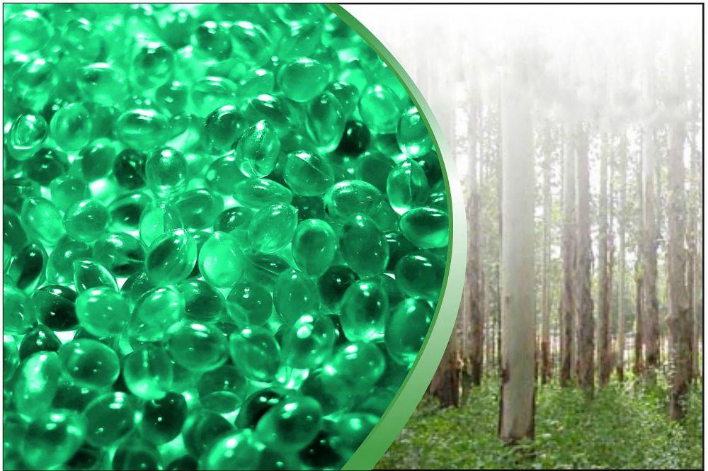Aromatherapy Spa Scent - Eucalyptus/Discovery