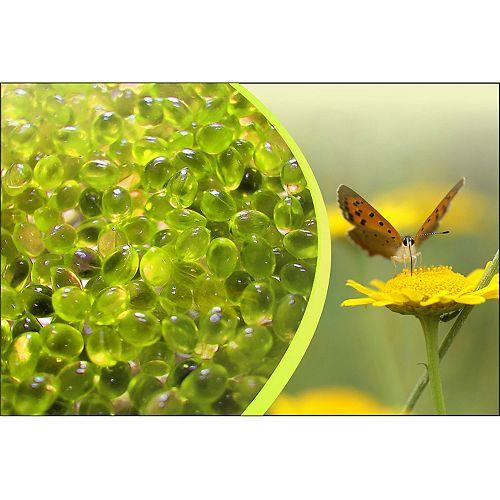 Canadian Spa Company Aromatherapy Chamomile/Vigour Spa Scent