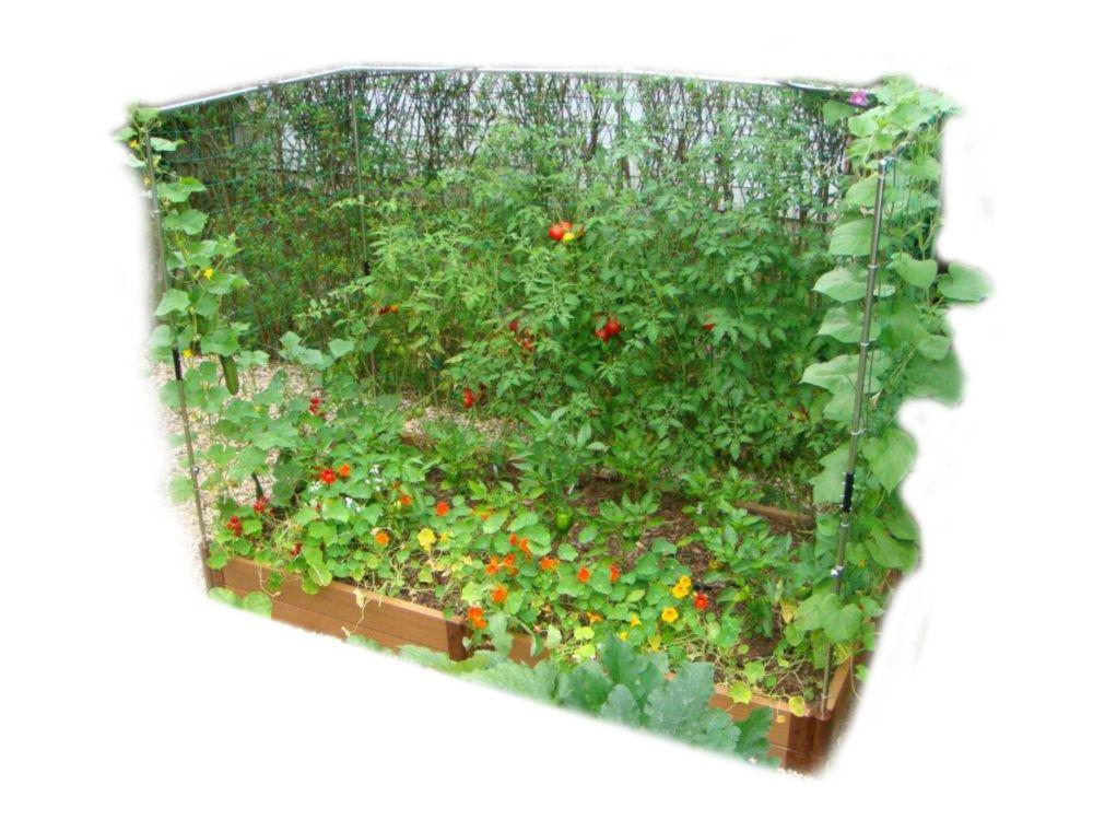 Raised Garden 2 Inch 4x8ft 2 Level c/w 2 Veggie Wall